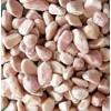 供应米色卵石加工,艺术卵石,异形卵石,地铺墙面卵石